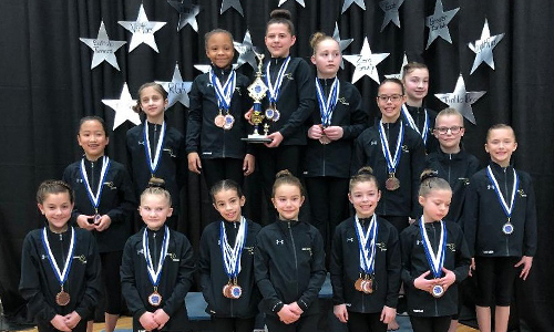 Bright Raven Gymnastics Level 3 Team Wins First at Niagara Cup